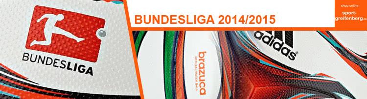 http://www.sport-greifenberg.de/blog/wp-content/bundesliga-2014-2015.jpg