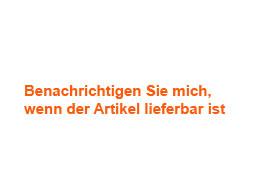 Das Borussia Dortmund Champions League Trikot 2013/2014 bestellen