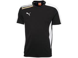 Das Puma Esito T-Shirt der Teamline für Vereine und Sportler