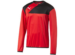 Puma Esquadra Training Sweat als Trainings Sportartikel bestellen