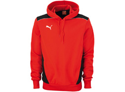 Das Puma Hooded Sweat als Sportbekleidung bestellen