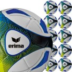10er Erima Hybrid Training Ballpaket