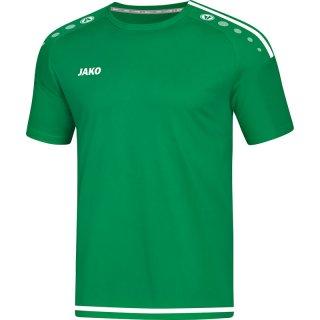 sportgrün/weiß Farbe