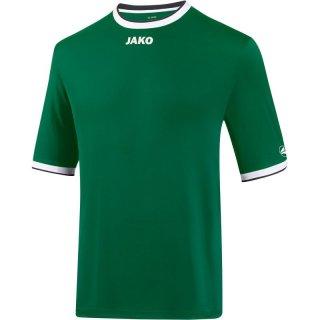 grün/weiß/schwarz Farbe