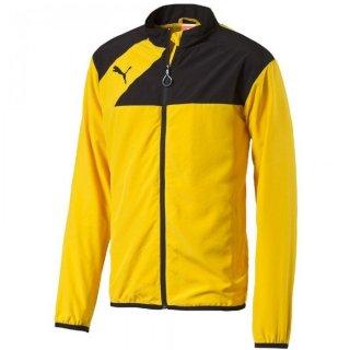 team yellow-black Farbe
