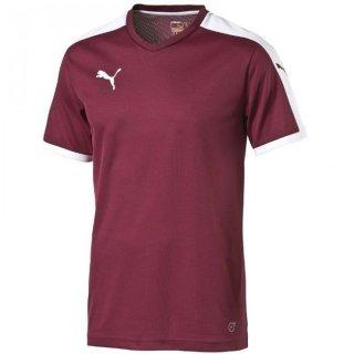 team burgundy-white Farbe