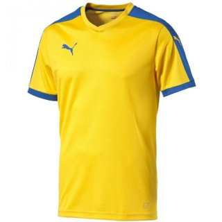 team yellow-puma royal Farbe