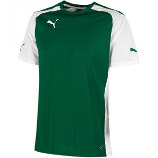 power green-white Farbe