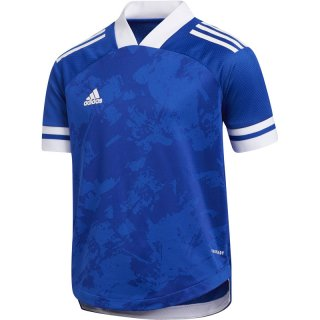 team royal blue/white Farbe