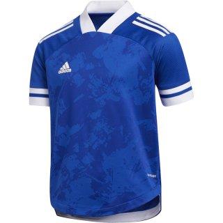 team royal blue/white Farbe