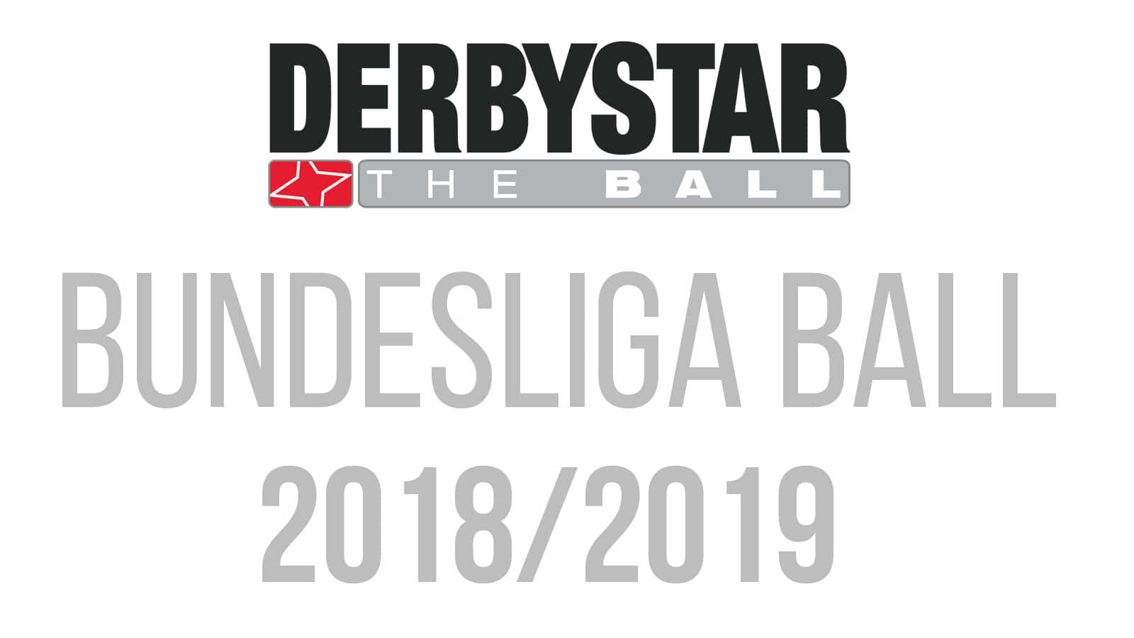 Der Derbystar Bundesliga Spielball 2018 2019 als Bundesliga Ball