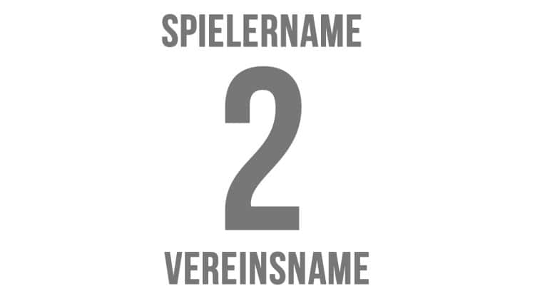Trikot Druck:  Spielername + Nummer + Vereinsname für alle Trikotsätze