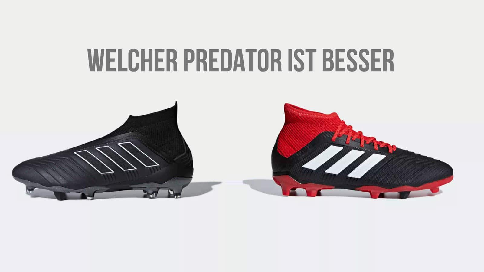 der adidas Predator 18 1 oder der adidas Predator 18 Plus