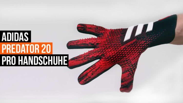 Die adidas Predator 20 Pro Torwarthandschuhe im Test und im Shop