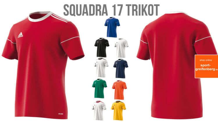 Das Adidas Squadra 17 Trikot Jersey als Trikot für Trikotsätze