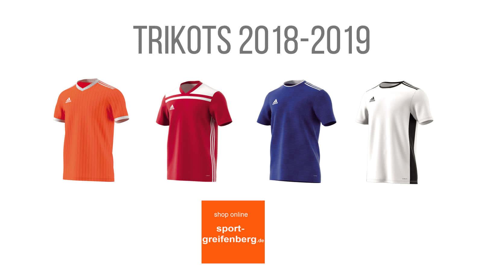 Die Adidas Trikots 2018/2019 Condivo, Regista, Tabela und Entrada 18