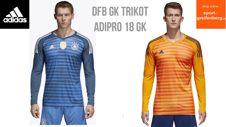 Das Adidas DFB Torwart Trikot und das adidas adipro 18 GK für die Jahre 2018/2019