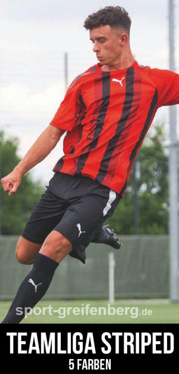 das Puma teamLiga Striped Jersey als eines der Puma Trikots 2021/2022