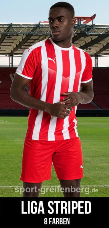 Das Puma Liga Striped Trikot für 2020/2021
