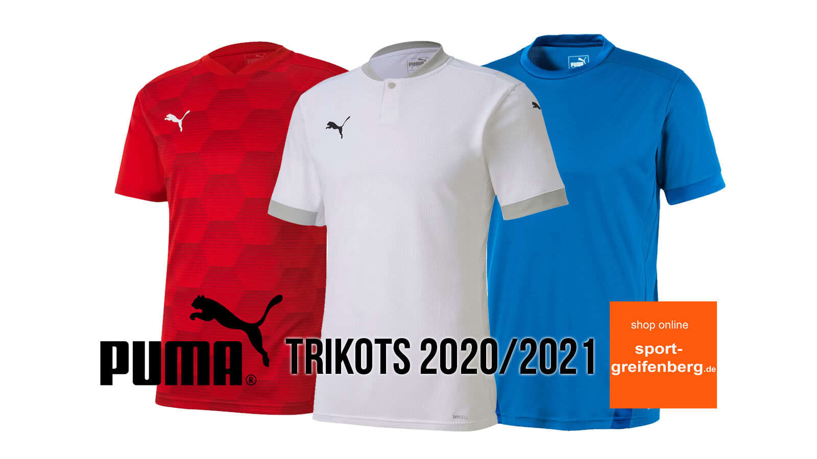 Die puma trikots 2020 2021 teamgoal und teamfinal