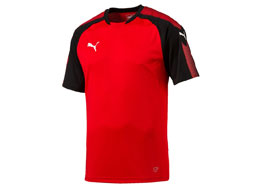Puma Ascension Training Jersey im Sportartikel Shop kaufen