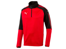 Puma Ascension Training Sweat als Trainingsbekleidung bestellen