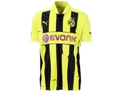 Das Borussia Dortmund Champions League Trikot 12/213 bestellen