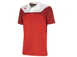 Das Puma Esito 3 Poloshirt als Sportbekleidung der Teamline