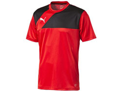 Das Puma Esquadra Training Jersey und T-Shirt