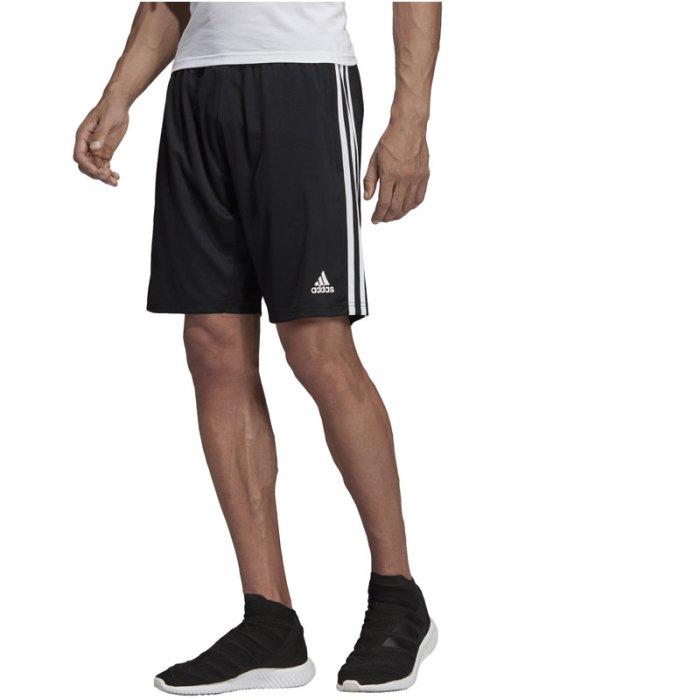 adidas Damen Tiro19 Training Pants Hosen: : Sport