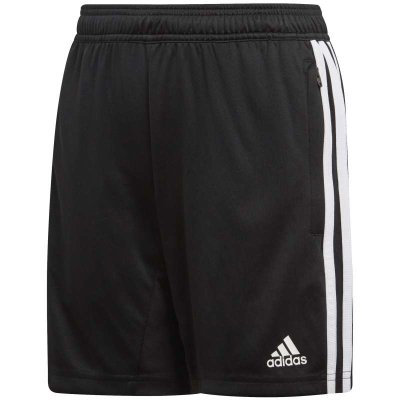 adidas Tiro 19 Training Short im Sport Shop