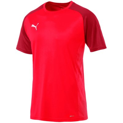 Puma Cup Sideline Tee Core im Sport Shop