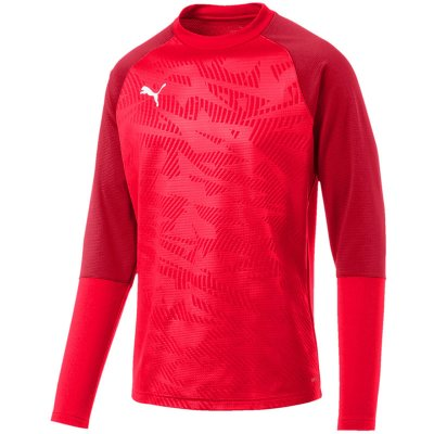 Puma Cup Training Sweat Core im Sport Shop