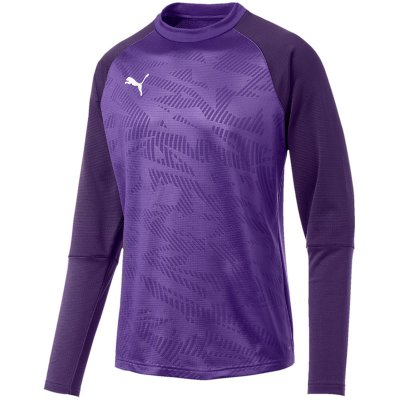 Puma Cup Training Sweat Core - prism violet-indigo - Gr. xxl im Sport Shop