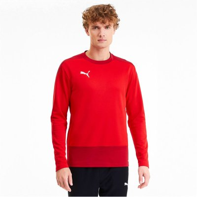 Puma teamGoal 23 Training Sweat