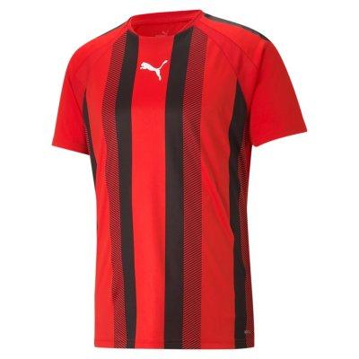 Puma teamLiga Striped Trikot Jersey