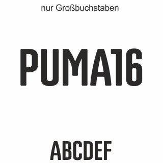 Puma16