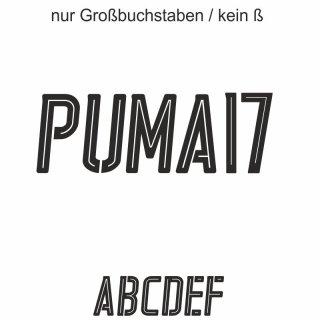 Puma17