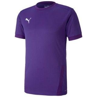 prism violet-tillandsia purple